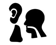 Produkter til Næse, Ører og mund |